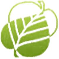 """OOO """"Озеленение и ландшафт"""" - озеленение, ландшафтный дизайн, проектирование"""
